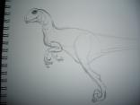 raptor_s
