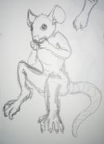 ratperson2