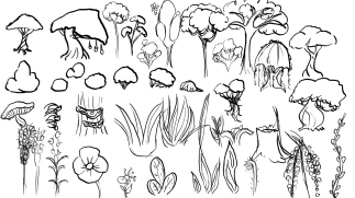 flora_temperate_concept_trees_bushes_flowersetc